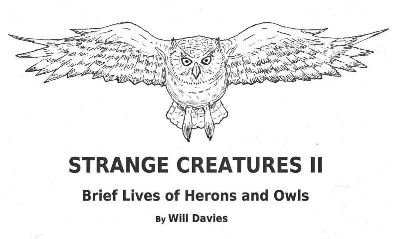 Strange Creatures II